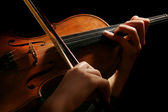 Violin playing — Foto de Stock