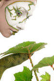 Woman with green plant — Stock Photo