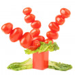 Creative tomatoes tree - Stock Photo