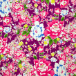 Classical Fabric with floral Pattern background — Stock Photo