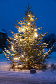 Beautiful Christmas Tree Outdoors white christmas — Stock Photo