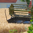 Stock Photo: Combine harvests a field