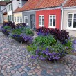 Old street with flower pots — Stock Photo #8894506
