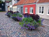 Vecchia strada con vasi di fiori — Foto Stock