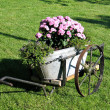 Garden decor in old wagon — Stock fotografie #8933491