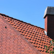 Roof with red tiles and a chimney — Photo
