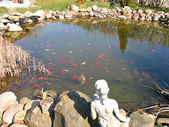 Garden fish pond — Stock Photo