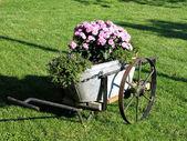 Garden decor in old wagon — Stock Photo