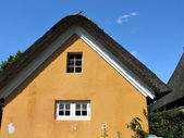 Danimarka çatı thatched saman ile tipik kır evi — Stok fotoğraf