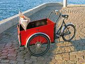 三轮车 — 图库照片