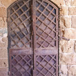 Old iron door — Photo