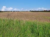 Open fields background — Foto de Stock