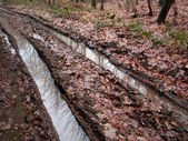 Land bospaden weg modderige whith band — Stockfoto