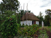 Small country house with thatched straw roof — Stock Photo