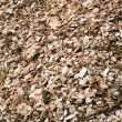 Wood chips mulch background — Stock Photo
