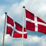 Flags of Denmark — Stock Photo #8976350
