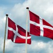 Flags of Denmark — Stock Photo