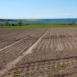 Agriculture plowed fields — Photo