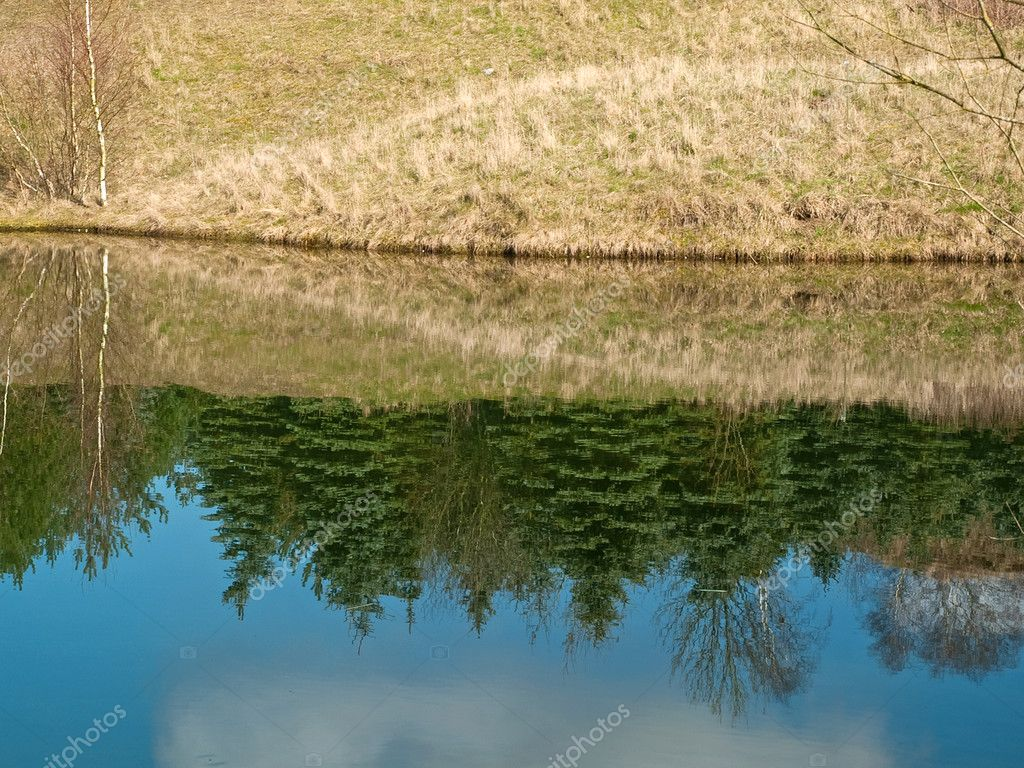 Beatiful summer nature landscape reflections in a small lake — Stock Photo #8976084