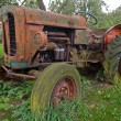 Old vintage tractor — Stock Photo #8985864