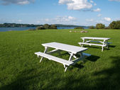 Outdoors Picnic tables — Stock Photo
