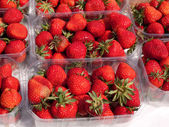 Fresh strawberries for sale — Stockfoto