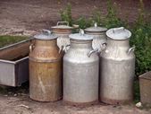 Jarros em uma fazenda de latas de leite — Fotografia Stock
