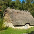 Viking age house in a village — Stock Photo
