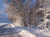 Winter road perfect background image — Stock Photo