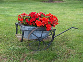 Garden decor in old wagon — Stock Photo