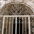 Ornamented decorative iron door — Stock Photo