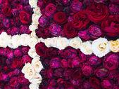 Flag of Denmark made of roses — Stock Photo