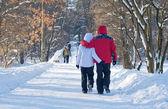 Walking through winter park — Stock Photo