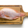 Gold fish, sea bass on a white background — Stock Photo
