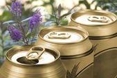 Three cans of lager — Stock Photo
