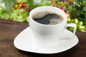 White coffee cup with coffee beans background — Stok fotoğraf