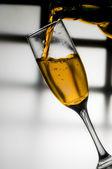 Vino,vino — Stock Photo