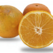 Orange on white background — Foto Stock