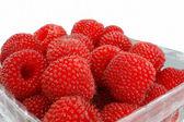 Raspberries isolated on white background — Stock Photo
