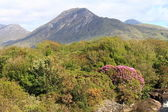 Montagne vicino a letterfrack, connemara, contea di galway, irlanda. — Foto Stock