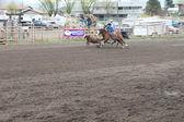 Nicola Valley Rodeo — Stock Photo