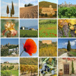 Foto Stock: Collage with fantastic tusclandscape