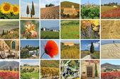 Colagem com a fantástica paisagem Toscana — Fotografia Stock