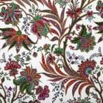 Elegant floral pattern — Stock Photo