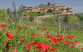 Tuscan village on hill — Stock Photo