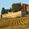 Foto Stock: Castle of Brolio and vineyards in Chianti
