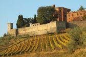Castelo de brolio e vinhas em chianti — Foto Stock