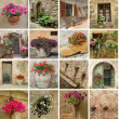 Foto Stock: Gardening collage