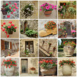 Gardening collage — Stock Photo #8305661