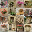 Gardening collage - Stock Photo